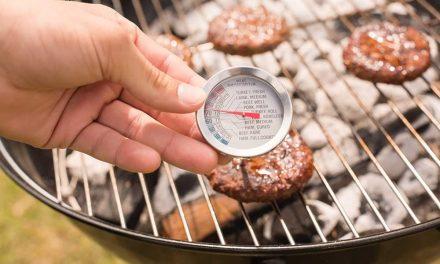 Thermomètres à viande